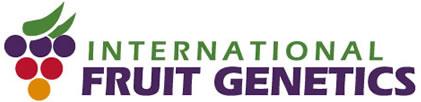 ifg_logo